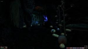 Uvirith's Legacy N'tashra's Sanctuary